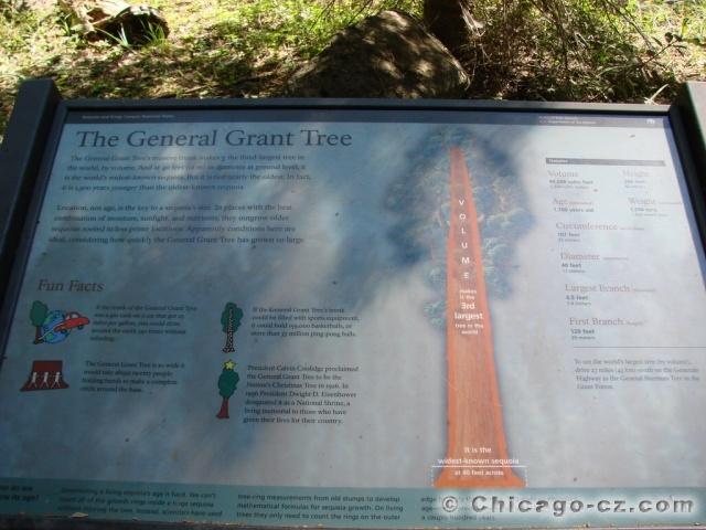 Kings Canyon N.P. Grants Grove General Grant tree popis