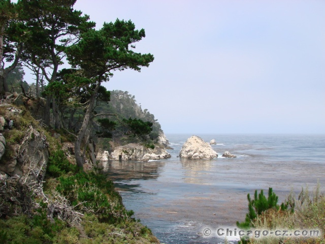 Point Lobos S.P.13