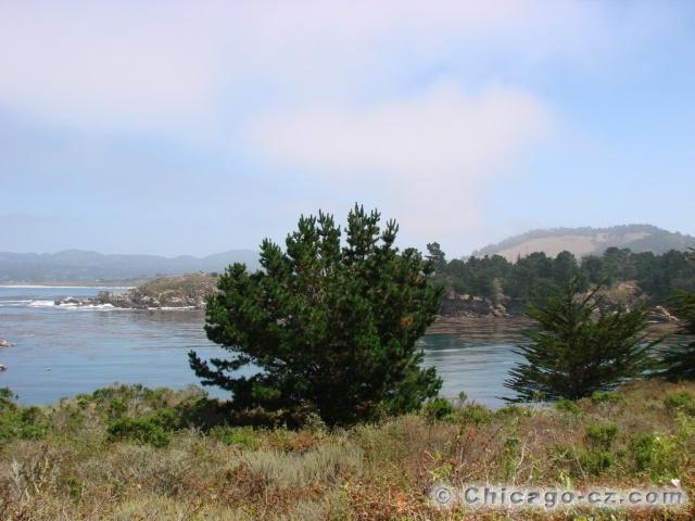Point Lobos S.P.14