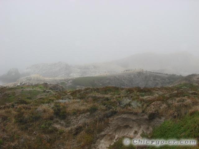 Point Lobos S.P.1