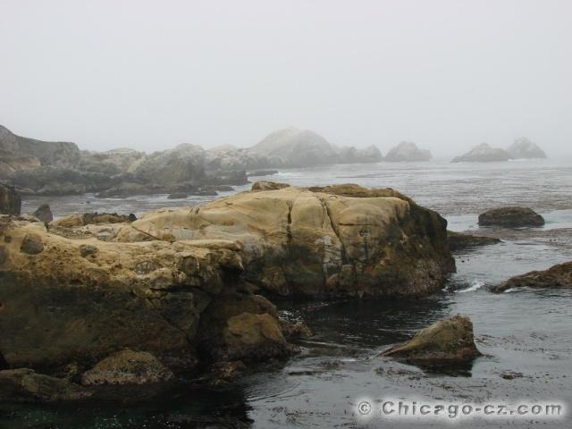 Point Lobos S.P.4