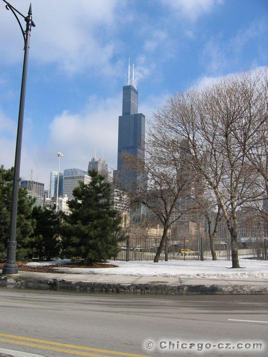 Sears Tower in Chicago (6)