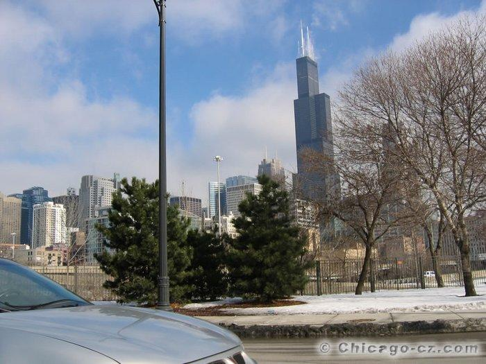 Sears Tower in Chicago (7)