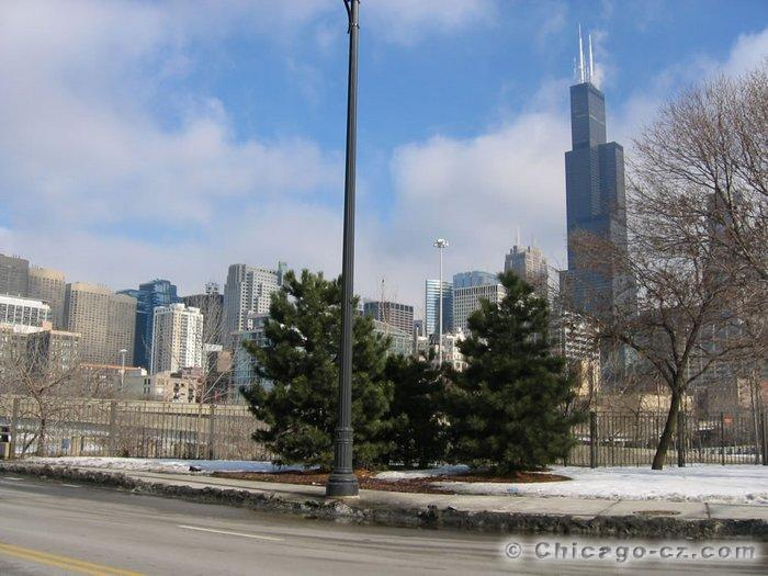 Sears Tower in Chicago (8)